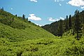 Deer Creek Valley (Preuss Range, Idaho, USA) 2 (49376353541).jpg