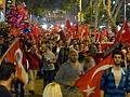 Demonstrations and protests against policies in Turkey 201306 1340663.jpg