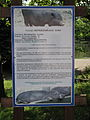 Descriptions of animals in the Silesian Zoological Garden n 24.JPG