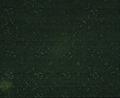 Detalj av svart sammetströja, Karl X Gustav - Livrustkammaren - 56127.tif