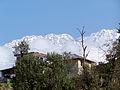 Dhauladhar mountains near Norbulingka Institute, Dharamsala.jpg