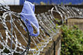 Discarded knickers (2686228365).jpg