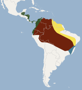 Distribution of Mimon crenulatum.png