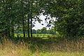 Doorkijkje. Locatie, Stuttebosch in de lendevallei. Provincie Friesland 01.jpg