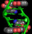 Doxorubicin–DNA complex 1D12.png