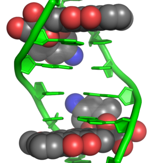 Anthracycline