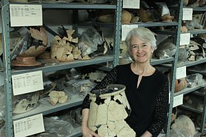 Joyce White - Dr. Joyce White, Executive Director at the Institute for Southeast Asian Archaeology (ISEAA).