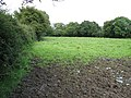 Drying out - geograph.org.uk - 515725.jpg