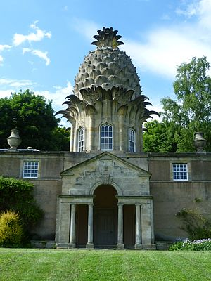 Dunmore Pineapple - Pineapple viewed from the south