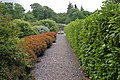 Dunvegan Castle Gardens - geograph.org.uk - 847096.jpg
