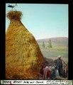 ETH-BIB-M'tal, Hütte mit Storch-Dia 247-04000.tif