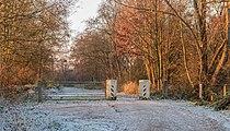 Eerste zonnestralen strijken over een winters landschap. Pad tussen Put van Nederhorst en Langweerderwielen. Locatie, Langweerderwielen (Langwarder Wielen) en omgeving 02.jpg