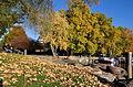 Ein sonniger Herbstnachmittag am Hafen Riesbach in Zürich 2011-10-26 16-52-44 ShiftN.jpg