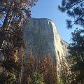 El Capitan at Yosemite.jpg