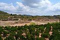 El riu Palància a Alfara de la Baronia.JPG