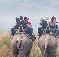 Elephant Safari in Kaziranga.jpg