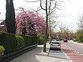 Elsrijk, 1181 Amstelveen, Netherlands - panoramio (53).jpg