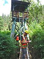 Engineers in the Tongass National Forest.jpg