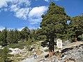 Entering Desolation Wilderness (3071920055).jpg