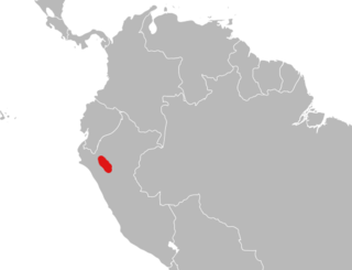 <i>Eremoryzomys</i> A rodent species in the family Cricetidae from central Peru