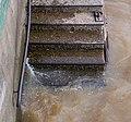 Escaleras muelle Río Luján.jpg