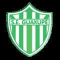 Esportiva Guaxupé.png