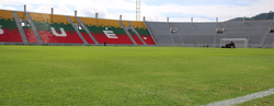 Estadio Manuel Murillo Toro playing field.png