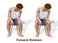 Exercise Forearm Rotation.png