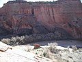 Exotic Species Removal Planning at Canyon de Chelly National Monument, Chinle, AZ - Beehive Cave Area (b27345c6-b0e8-4c18-93d2-fc9bf9a1a45a).jpg