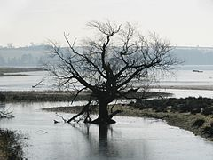 Eyebrook Reservoir, East Midlands, England-7Feb2007.jpg