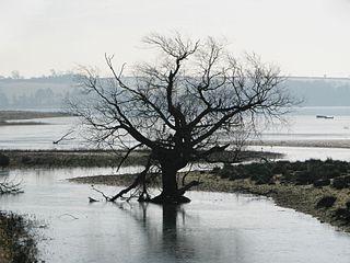 Eyebrook Reservoir lake in the United Kingdom