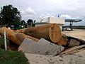 FEMA - 195 - Photograph by Dave Gatley taken on 09-27-1999 in North Carolina.jpg