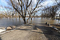 FEMA - 43199 - Red River flooding a dirt road in North Dakota.jpg