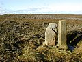 Faber Stone and Boundary Stone - geograph.org.uk - 76863.jpg