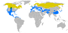 Yellow: summer only. Green: all year. Blue: winter only.