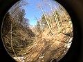 Fall Run Park in Shaler Township, late winter - 37.jpeg