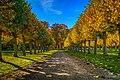 Fall trees at Ulriksdals Slott - panoramio.jpg