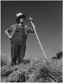 Farm Security Administration, Farm hand in Goldendale, Washington - NARA - 195843.tif