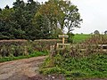 Farm walk at Orchard Farm, Kirkmichael - geograph.org.uk - 264595.jpg