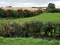 Farmland near High Farm - geograph.org.uk - 576397.jpg
