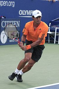 Fernando Verdasco at the 2009 US Open 01.jpg