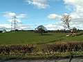 Field and Pylon - geograph.org.uk - 371560.jpg
