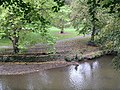Fishing, River Kelvin - geograph.org.uk - 1515028.jpg