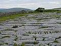 Fissured limestone pavement - geograph.org.uk - 943948.jpg