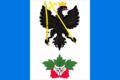 Flag of Chernigovskoe (Belorechensky rayon).png