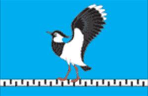 Zherdevka, Tambov Oblast - Image: Flag of Zherdevka (Tambov oblast)