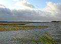 Flickr - Per Ola Wiberg ~ mostly away - Fresh winds.jpg