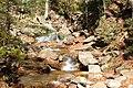 Flume Gorge Trail, Lincoln (494013) (11849778584).jpg