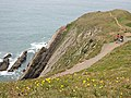 Footpath at Baggy Point - geograph.org.uk - 301836.jpg