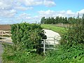 Footpath near Cranswick - geograph.org.uk - 1453865.jpg